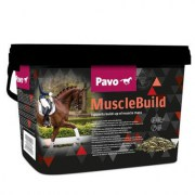 pavo_muscle_build_new_oxy